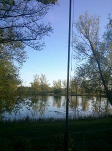 Nur ein Mast versperrt die Sicht auf den idyllischen Teich.