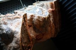 Dry Aged Rindfleisch